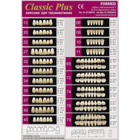 ZĘBY CLASSIC PLUS - PRZODY OP 6 SZT